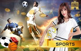 The Worth and also Cost of a Sbobet Asia sports activities Betting System